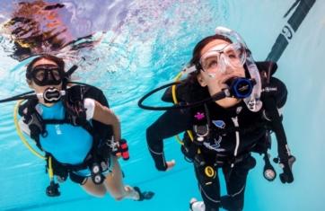 adaptive suport diver