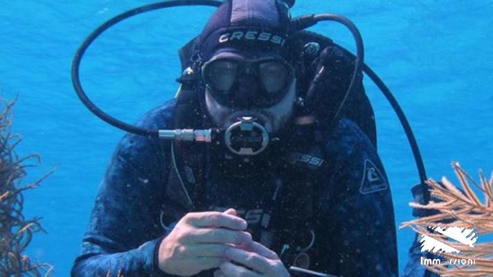 5 Motivos para você adquirir seus equipamentos básicos de mergulho durante o curso Open Water!